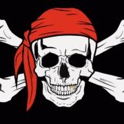 Manfred Schmid - Piratenprinzip