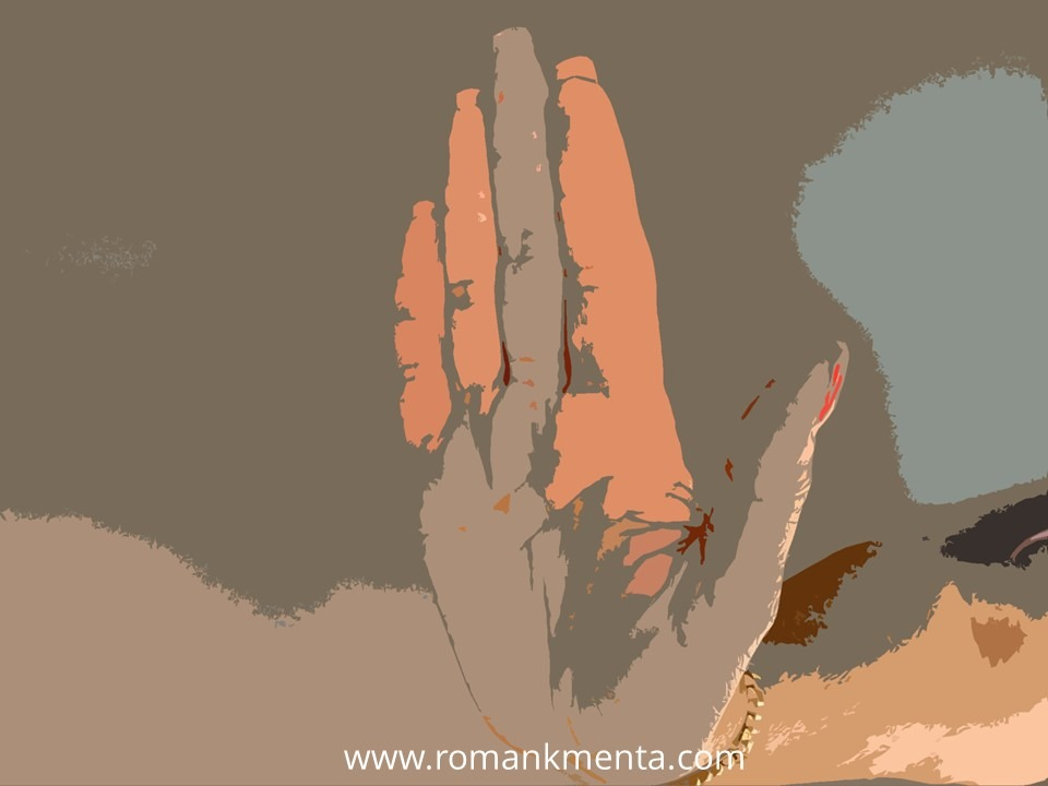 Einwandbehandlung-Roman Kmenta - Speaker